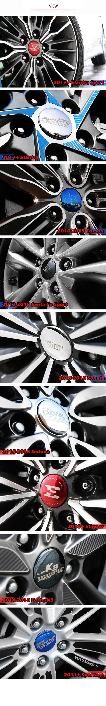 wheelcap2.jpg